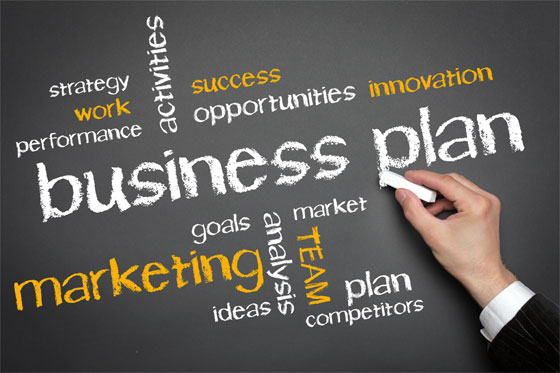 write a business plan for any industry.