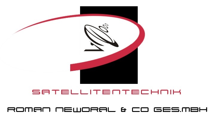 do a perfect logo for your company