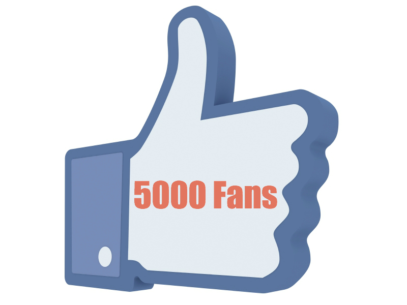 give 5k+ likes of Facebook fan page