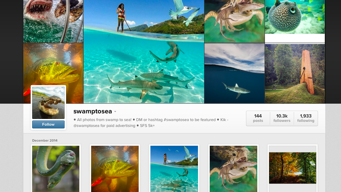 give you a shoutout to over 10,300k people on Instagram