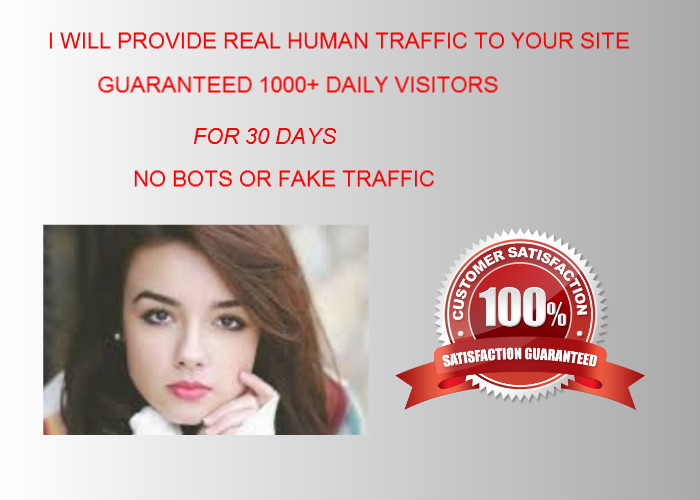 drive 1000+ daily visitors to your site for 30days
