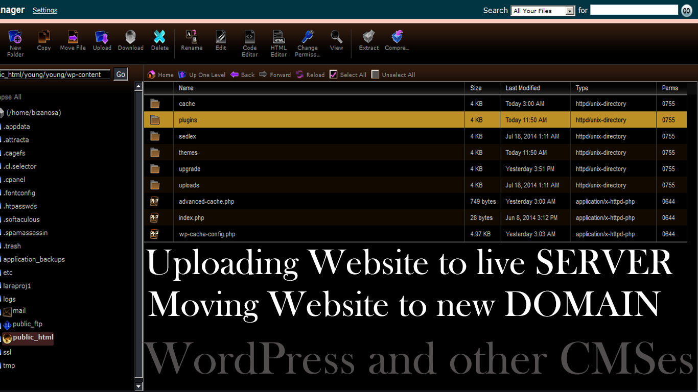 rapidly transfer WordPress from one domain to another