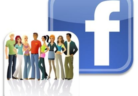 provide 350 High Quality Real likes for your Facebook Fan page