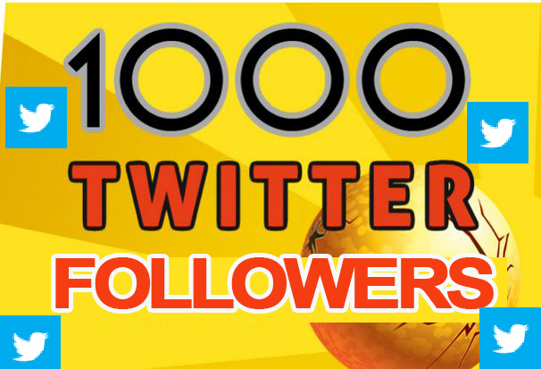 GIVE YOU 1000 REAL TWITTER FOLLOWERS