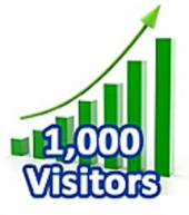 give you 1,000 Visitors In One Month