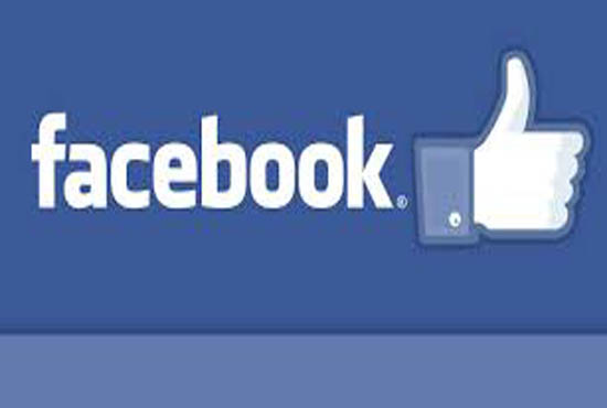 provide you worldwide 500 Facebook fanpage likes