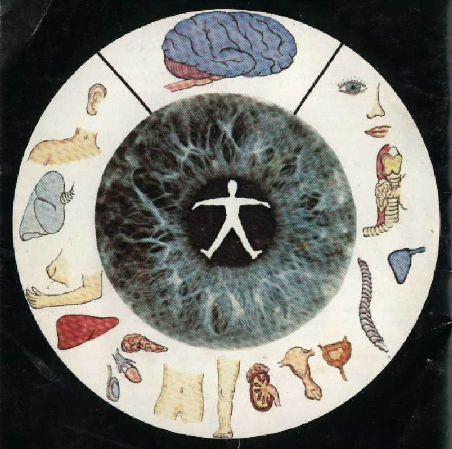 do an Iridology Analysis!