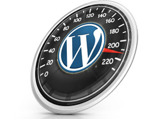 build your (super fast ,super seo and mobile friendly) wordpress site