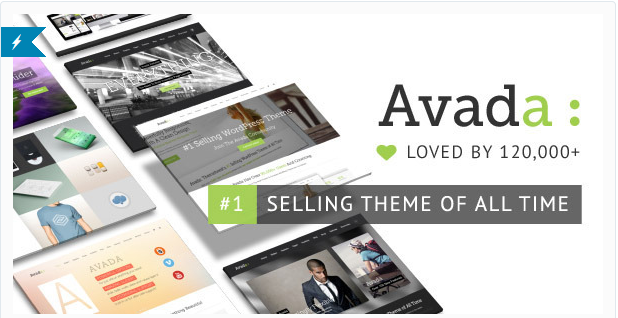 customize wordpress premium theme Avada