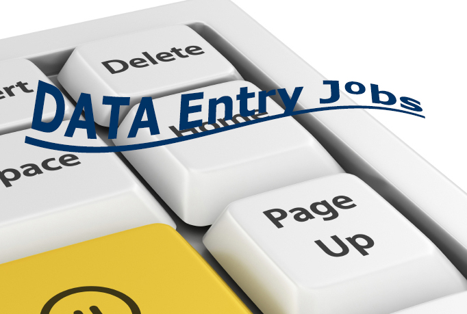 Do Any Data enty Job