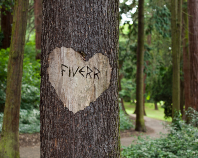 carve your message onto a tree