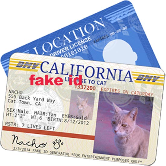 make fake id generator