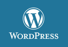 install a wordpress with demo theme