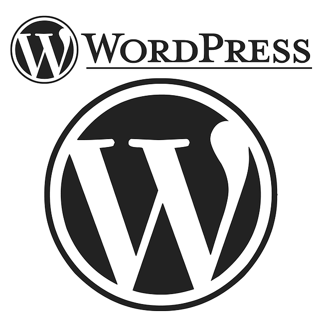 improve your wordpress performance and speed