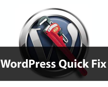 fix your Wordpress Website issues PRO