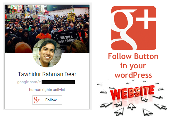add Google Plus Follow Button for WordPress