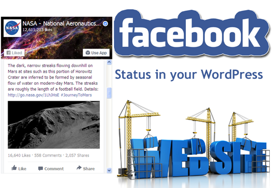 add Facebook Feed in WordPress website
