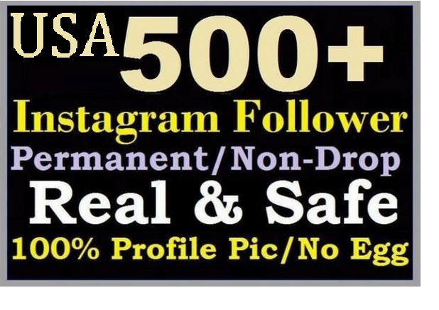 add 500 USA instagram follower