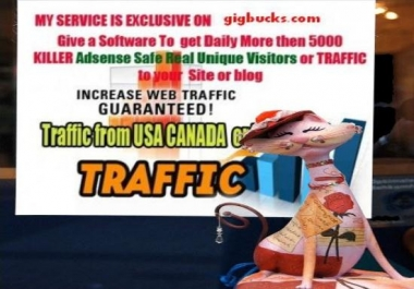 send a software 2get daily 5000 Real TRAFFIC 2ur site