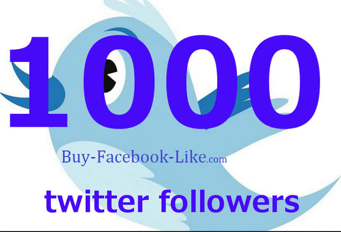 add 1000 Permanent Twitter Followers