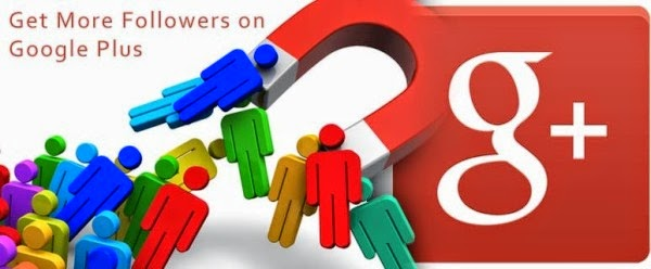 add 200+ Google Plus Followers/Circles