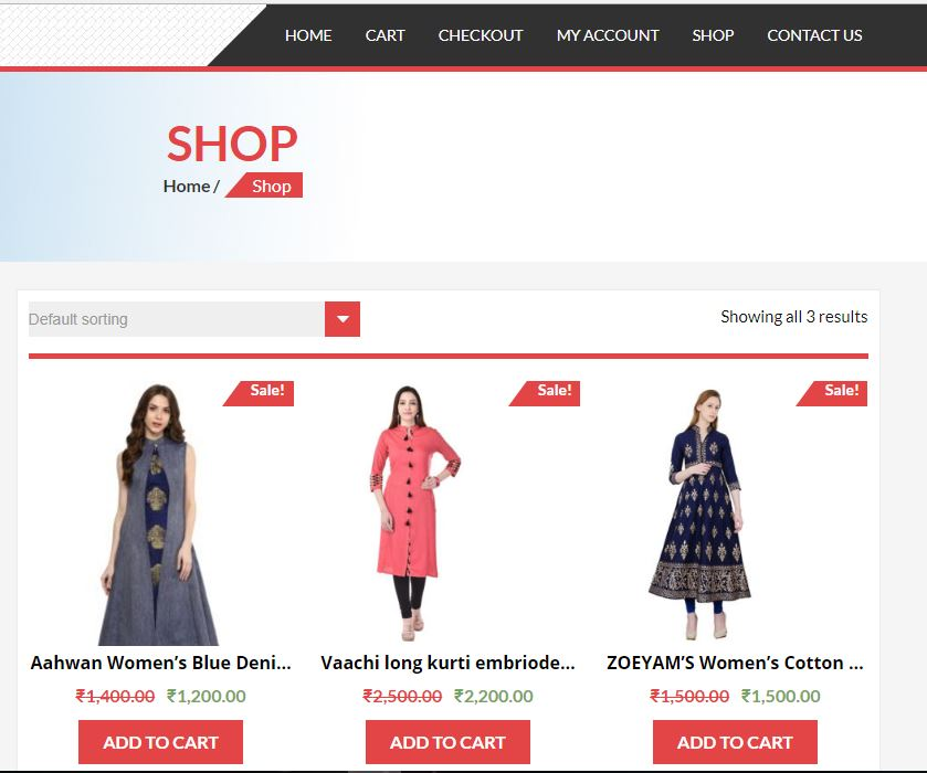 Create E-Commerce Wordpress Website