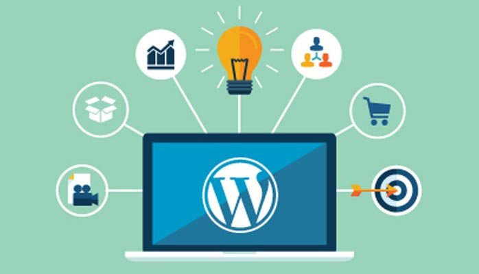 Create Customize, Your Wordpress Website