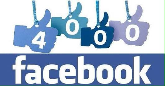 Give you 4000 Fb page likes non drop gurantee