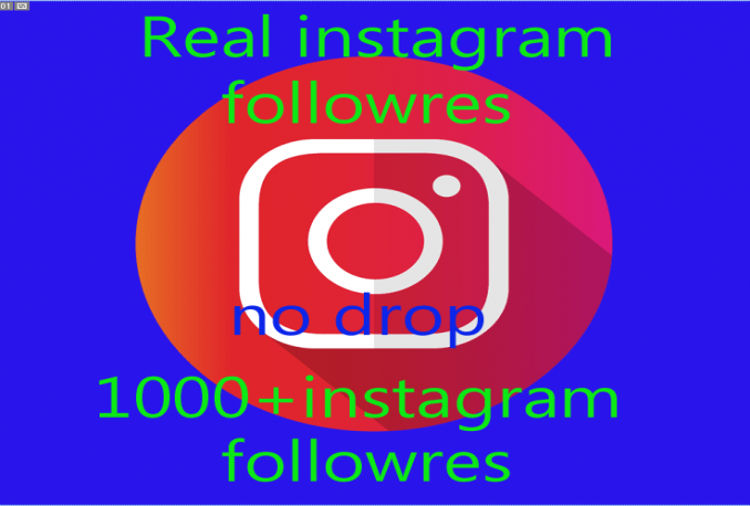 Provide 1000+ Instagram Non-Drop Real followers