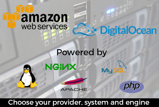 set up your AWS or DigitaIOcean instance/droplet for hosting your website