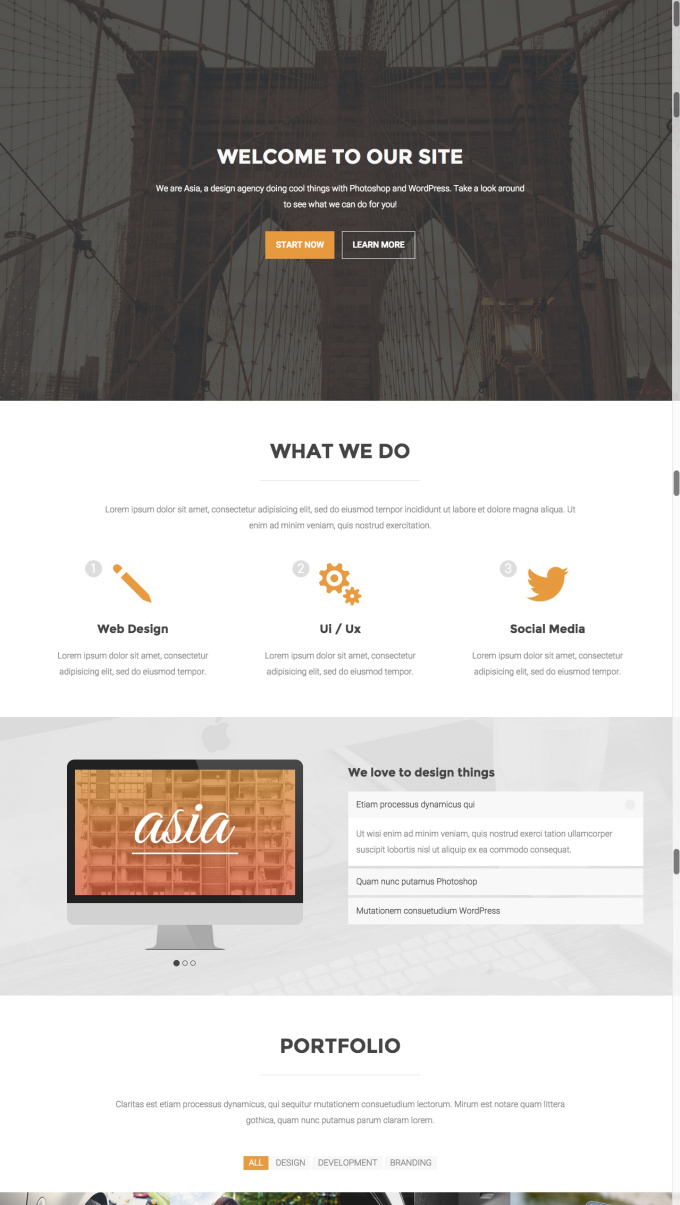 create a clean and professional website