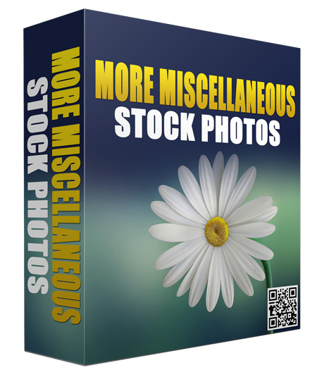 give you Stock Images For You To UseIn Your Projects And Your Clients Projects.