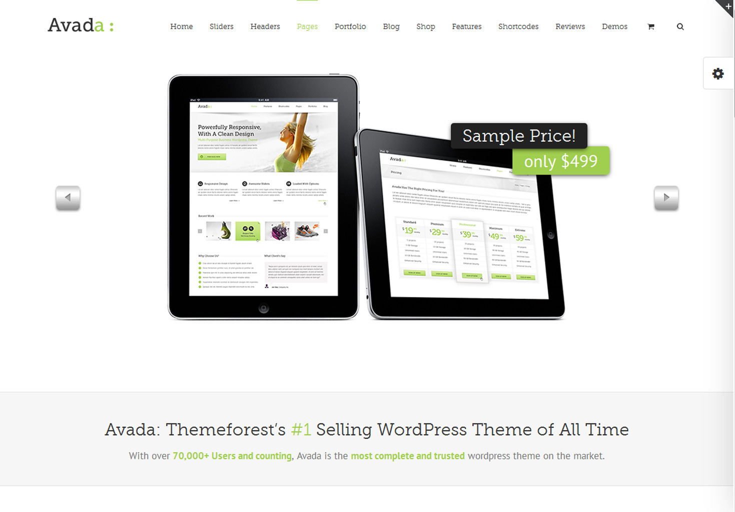 build your site use Avada theme