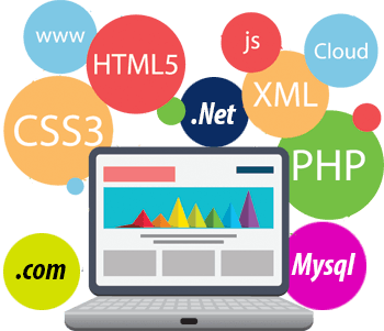 develop professional website