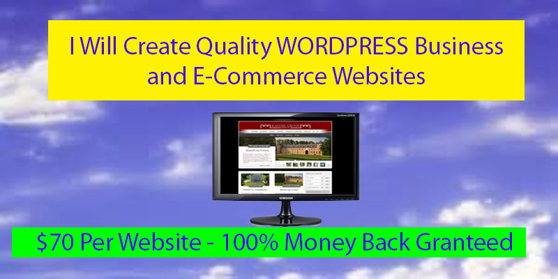 create quality WORDPRESS Business and Ecommerce Websites