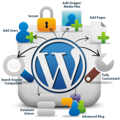 solve any wordpress problem or creat Web