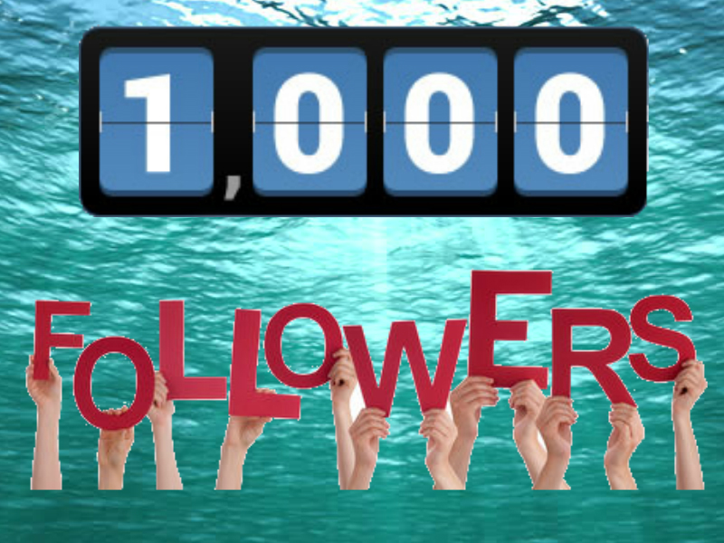 Get You 1,000 Followers In 1 Hour