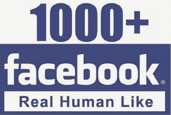 give you 1200 nondrop facebook page likes
