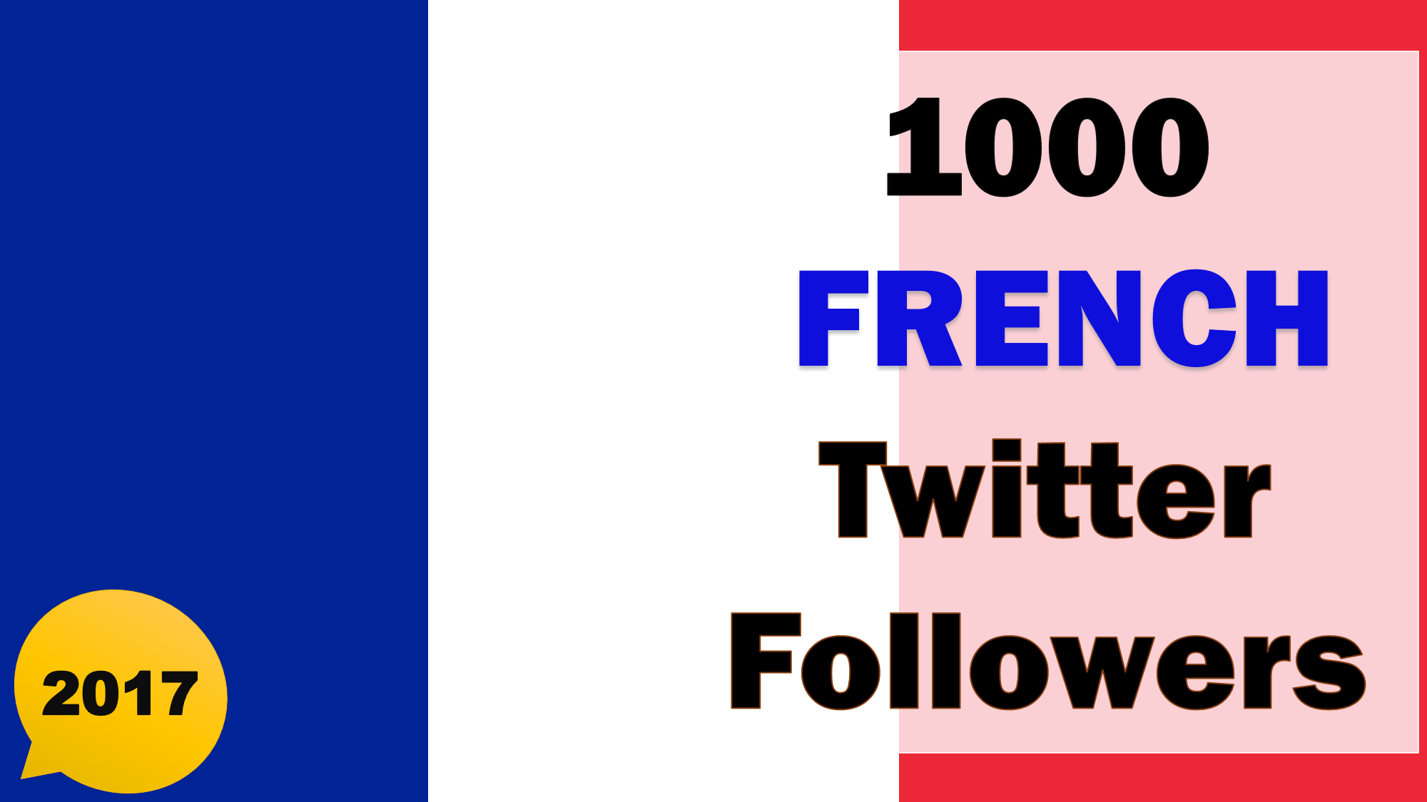Promote and Provide 1000 French Twitter Followers