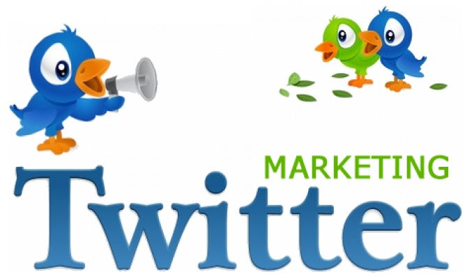 Start Instant 1000 Twitter Followers in Your Profile (5)