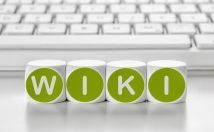 Create 3,000 Wiki backlinks (mix profiles & articles)