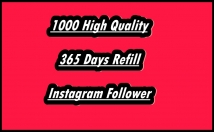 Provide You 1000 High-Quality Guaranteed Instagram Followers
