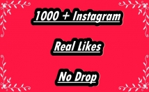 Provide 1000+ Instagram Non-Drop Real Likes