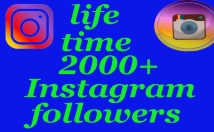 Provide 2000+ Instagram Non-Drop Real followers