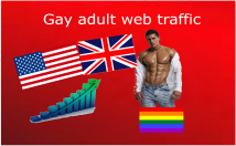 Send you 10,000 visits of gay adult web traffic from United States United Kingdom