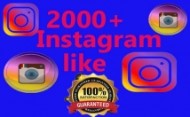 give you 2000+Instagram Like